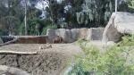 San Diego Zoo - Llama and Camel