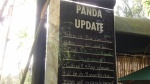 San Diego Zoo - Panda Update Board (top)